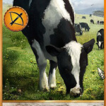 Hearts of Stone Cow card witcher 3